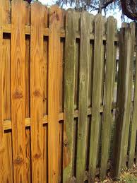 Wooden Privacy Fence Before And After Pressurewashing Backyard Remodel Pressure Washing Services Pet Door Installation