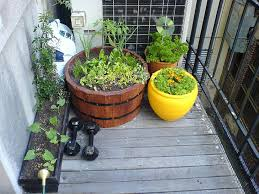 diy how to plant a personal garden in
