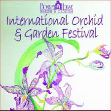 bonnet house international orchid