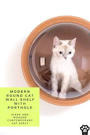 modern round cat wall shelf with