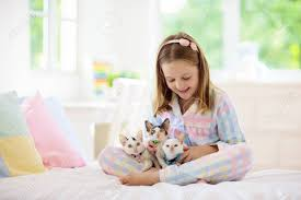 Child Playing With Baby Cat On Bed In White Bedroom Kid Holding Stock Photo Picture And Royalty Free Image Image 127875280
