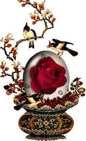 اغرس وردة في بستان منتدى ملاك الروح - صفحة 14 Images?q=tbn%3AANd9GcSAQEZDc0jbXh_NKLy-Af2IzWn0zsUPH7tyXkLlHKU3GsNowtP5&usqp=CAU