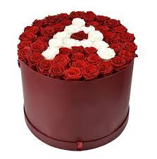 بوكس ورد جوري أحمر ليتل روز Little Rose