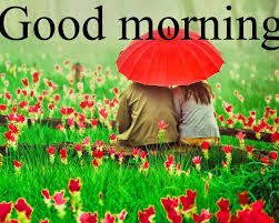 romantic photos and good morning images