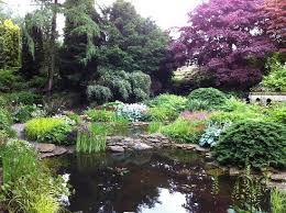 wentworth garden centre rotherham