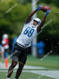 Detroit Lions tight end Wes Saxton catches Editorial Stock Photo - Stock  Image   Shutterstock