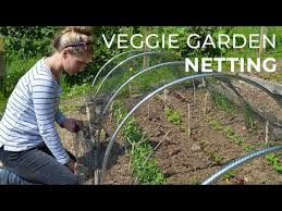 garden netting protecting crops in the