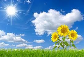 sun and sky free stock photos