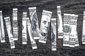 Peter Buckland News & Topics - Green Entrepreneur