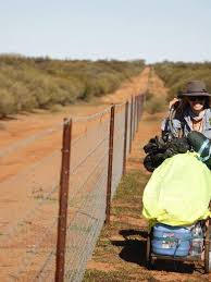 Woman Retraces Steps Of Three Aboriginal Girls Who Walked Along Wa S Rabbit Proof Fence In The 1930s Abc News