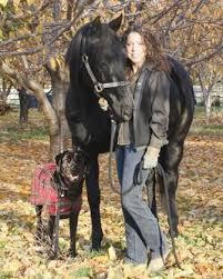 Lynette-Smith - Equine Studies Institute