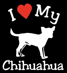 New I Love My Dog Chihuahua Pet Car Decals Stickers Gift Appealing Signs