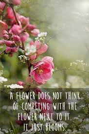 flower quotes flower sayings flower picture quotes