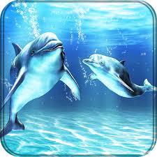 ดาวน โหลด dolphins live wallpaper