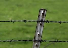 Barbed Wire Fixing Barbed Wire Fencing Kata Tar कट ल त र In Raigad Prerana Enterprises Id 13559836591
