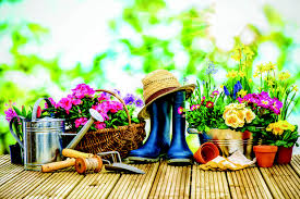 home gardening work is coming soon