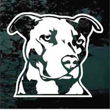 Pitbull Car Decals Stickers Decal Junky