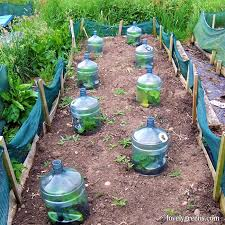 12 seed starting ideas using recycled