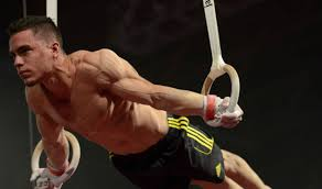 the best gymnastic rings to elevate