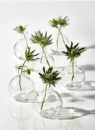 glass bud vases whole for events