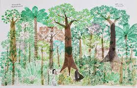 A visual journey through the Amazon rainforest | Apollo Magazine
