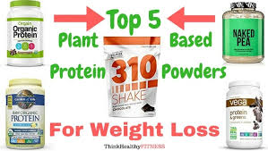 best plant based protein powders for