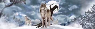 Wolves Custom Vinyl Graphics