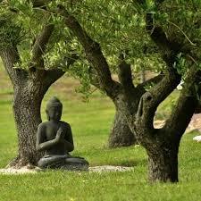Randonnées quêtes méditatives. - Home | Facebook
