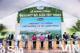 Resort bò sữa Vinamilk Tây Ninh - Ngôi nhà của những cô bò hạnh phúc