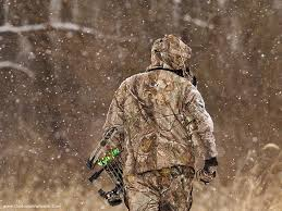 bowhunting woods wallpapers55 best