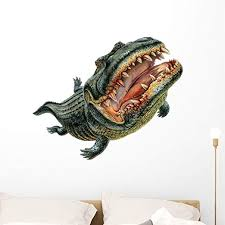 Amazon Com American Alligator Wall Decal By Wallmonkeys Peel And Stick Graphic 36 In W X 29 In H Wm262931 Home Kitchen