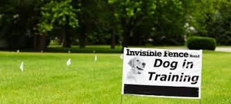 Create Your Own Invisible Fence Doityourself Com