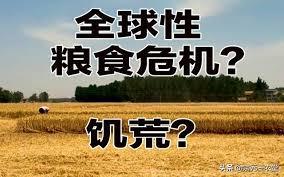 悟空问答- 2020年下半年会爆发全球粮食危机吗?(6个回答)