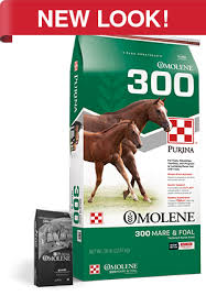 growth concentrate horse feed