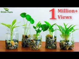 how to make indoor water garden from