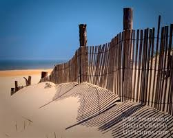 Dune Fence At Fenwick Island State Park Bill Swartwout Photography