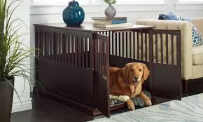 5 Tips For Choosing The Right Size Dog Kennel Overstock Com