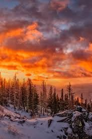 beautiful winter snow trees clouds