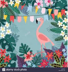 Nuevo Partido Envuelto Tarjetas Flamingo Feliz Cumpleanos Diseno