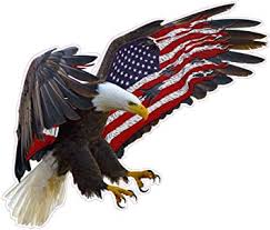 Amazon Com Graphics Inc Sign American Eagle American Flag Magnet Decal Is 6 In Size From The United States Furniture Decor