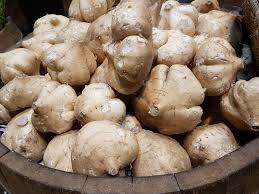 jicama nutritional benefits how to