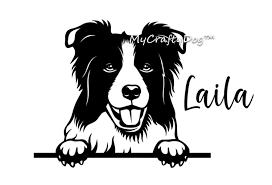 Border Collie Peeking Dog Car Decal Sticker Border Collie Etsy In 2020 Dog Decals Dog Car Collie