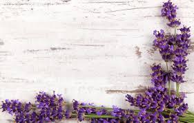 wood flowers lavender