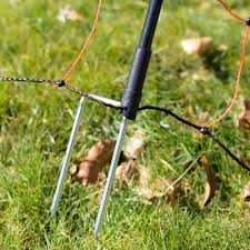 Electric Fencing To Protect Poultry Your Chickens