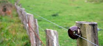 How To Determine The Length Between Your Electric Fence Posts Doityourself Com