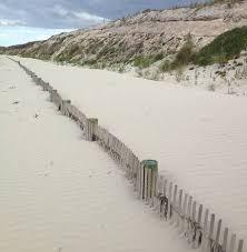 Port Fairy East Beach Erosion Control Hailed A Success The Standard Warrnambool Vic