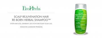 dandruff oily for hair care hair loss
