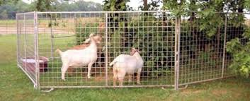 Northeast Gate Co Portable Goat And Sheep Panels