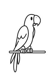 Parrot Coloring Page Papegaai Kleurplaat Kleurplaten Dieren