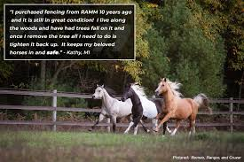 Ramm Horse Fencing Stalls प स टहर Facebook